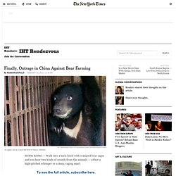 Finally, Outrage in China Against Bear Farming