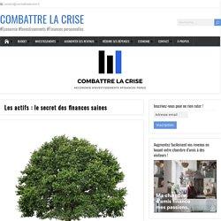 Les actifs : le secret des finances saines - Combattrelacrise.fr