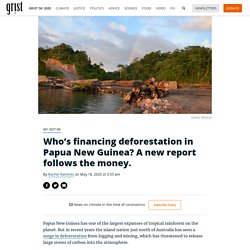 Who's financing deforestation in Papua New Guinea? A new report follows the money.