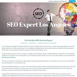 Find the Best SEO Services Expert – SEO Expert Los Angeles