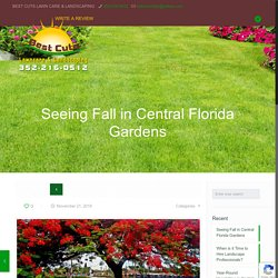 Finding Fall in Central Florida Landscapes