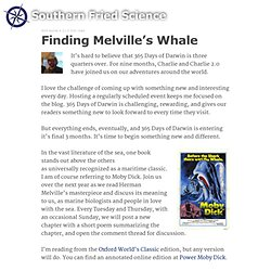 Finding Melville's Whale