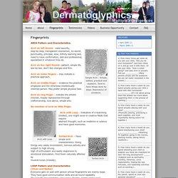 GeneCode Dermatoglyphics