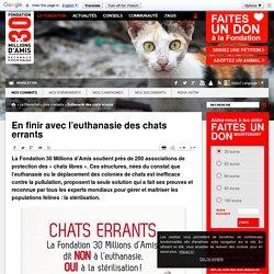 En finir avec l'euthanasie des chats errants