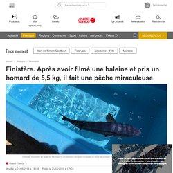 Finistère. Après avoir filmé une baleine et pris un homard de 5,5 kg, il fait une pêche - Quimper.maville.com