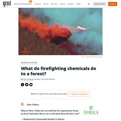 What do firefighting chemicals do to a forest?