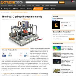 The first 3D-printed human stem cells