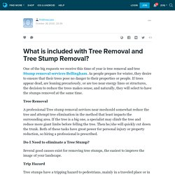 What is included with Tree Removal and Tree Stump Removal?