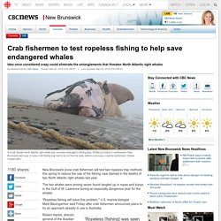 Crab fishermen to test ropeless fishing to help save endangered whales - New Brunswick