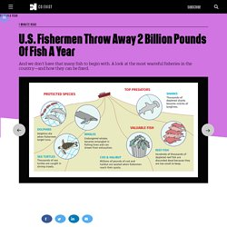 U.S. Fishermen Throw Away 2 Billion Pounds Of Fish A Year