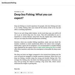 Deep Sea Fishing: What you can expect? – bestkeywestfishing