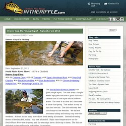 Carp Fly Fishing Denver South Platte River Information