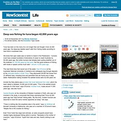 Deep sea fishing for tuna began 42,000 years ago - life - 24 November 2011
