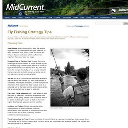 Fly Fishing Strategy Tips