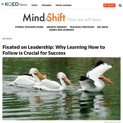 Fixated on Leadership: Why Learning How to Follow is Crucial for Success