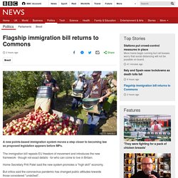 Flagship immigration bill returns to Commons