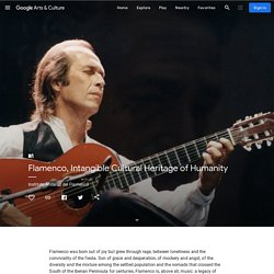Flamenco, Intangible Cultural Heritage of Humanity - Instituto Andaluz del Flamenco