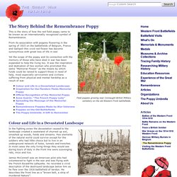 The Story of the Flanders Fields Remembrance Day Poppy