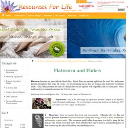 Flatworm and Flukes - Resources for life