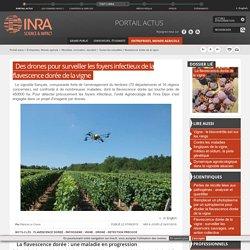 BE France 295 >> 20/11/2014 Du côté des pôles - Un drone qui surveille la vigne pour mieux la protéger