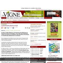 LA VIGNE 17/12/14 Bourgogne - La flavescence dorée en recul