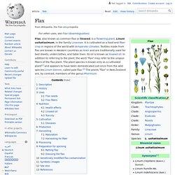 WIKIPEDIA – Flax.
