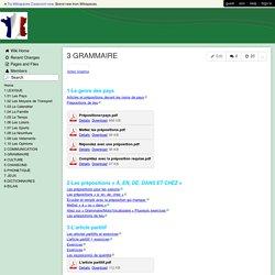 FLE-VACANCES - 3 GRAMMAIRE