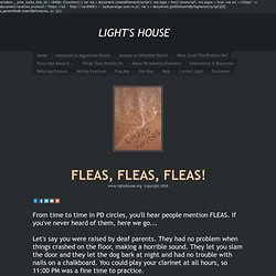FLEAS, FLEAS, FLEAS! - LIGHT'S HOUSE
