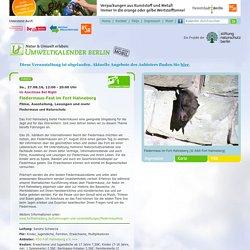 27.08.16, 12:00 - 20:00 Uhr - Fledermaus-Fest im Fort Hahneberg - Filme, Ausstellung, Lesungen und mehr