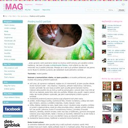 MAG: Plstěný kočičí pelíšek
