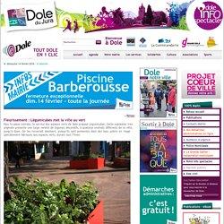 Fleurissement : Légumicubes met la ville au vert - Accueil - Mairie de Dole