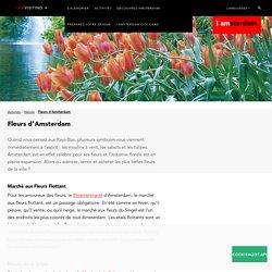 Fleurs d'Amsterdam