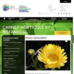 les fleurs comestibles (tableau) : Feuillet horticole du Carnet horticole et botanique