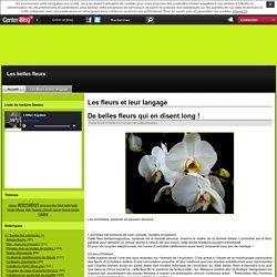 les fleurs et leur langage - Page 4