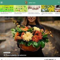 30 fleurs à planter en automne - Fleurs du jardin