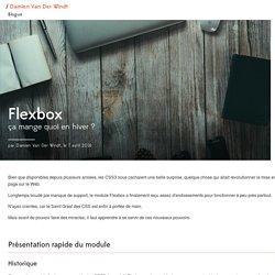 Flexbox, ça mange quoi en hiver ?