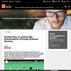 Flexible Data