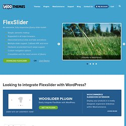 FlexSlider - The Best Responsive jQuery Slider
