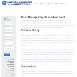 Flood Damage Carpets Sunshine Coast - Water Damage Sunshine Coast