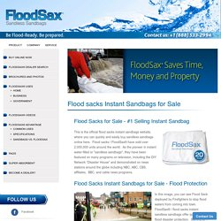 Buy Flood Sacks – FloodSax Americas