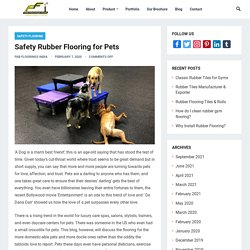 Safety Rubber Flooring for Pets - Blogs