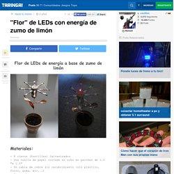 """""""Flor"""" de LEDs con energía de zumo de limón - Taringa!"""