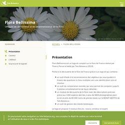 Flora Bellissima