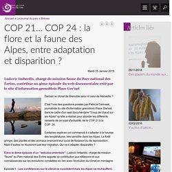 COP 21… COP 24 : la flore et la faune des Alpes, entre adaptation et disparition ?