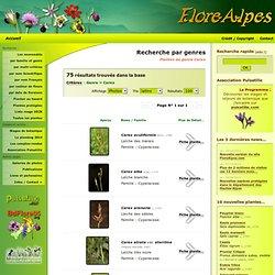 Plantes du genre botanique Carex