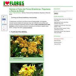 Nomes de Flores Brasileiras: Populares e Raras do Brasil