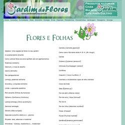 Flores e Folhas
