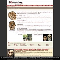 Homo floresiensis - Homme de Flores - Hobbit - Ancêtres