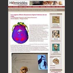Homo floresiensis, l'intérieur de son crâne montre sa parenté avec Homo erectus