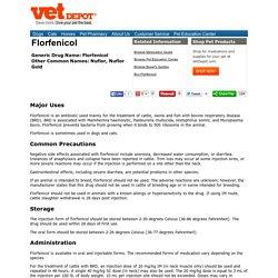 Florfenicol medication guide
